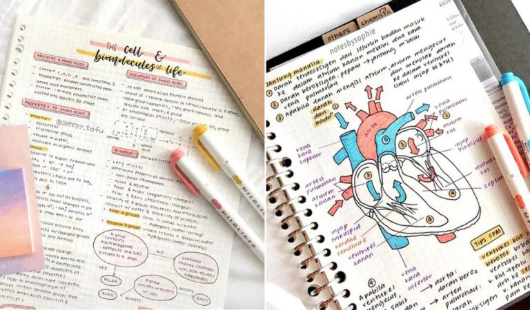 10 studygrams para você seguir agora mesmo